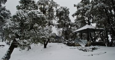 Weekend snow nag tibba trek Justwravel