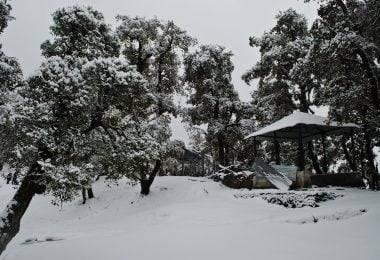 Weekend snow trek to Nagtibba - Justwravel