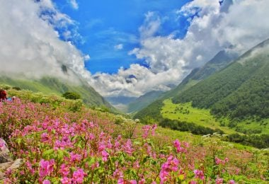 Trekking Experience Valley of Flowers & Hemkund Sahib