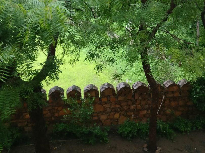 national parks in Rajasthan justwravel
