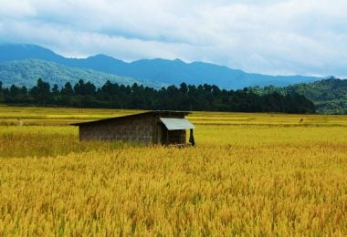 Talle Valley – The hidden beauty of Arunachal Pradesh