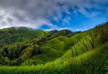 Dzukou Valley - The heaven of Nagaland