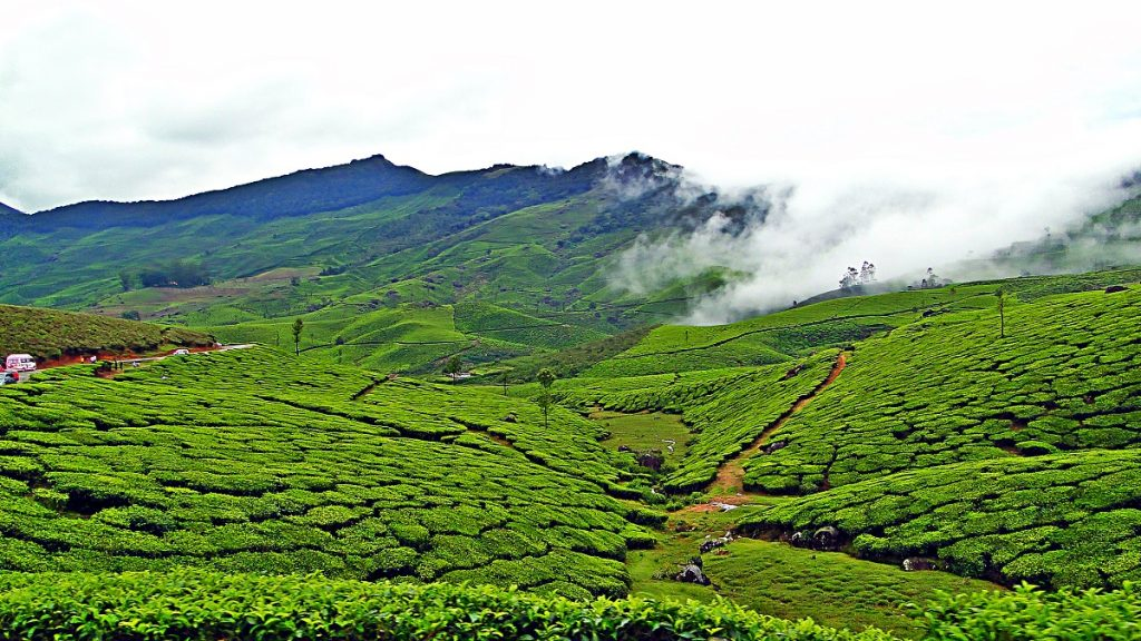 places to visit in Kerala justwravel