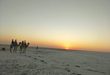Explore Rann of Kutch - A Place of White Wonder