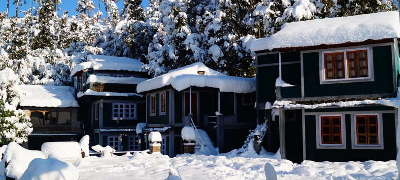 Binsar Eco Camps in the month of December justwravel
