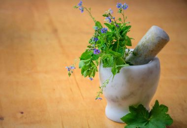 Ayurvedic Remedies: How They Can Be Answer to All Your Problems While Travelling?