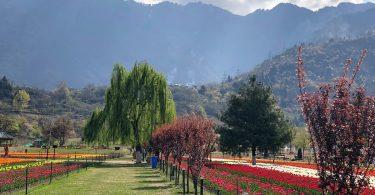 reasons visit Kashmir