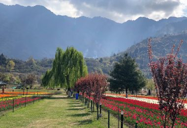 12 Reasons to Visit Kashmir