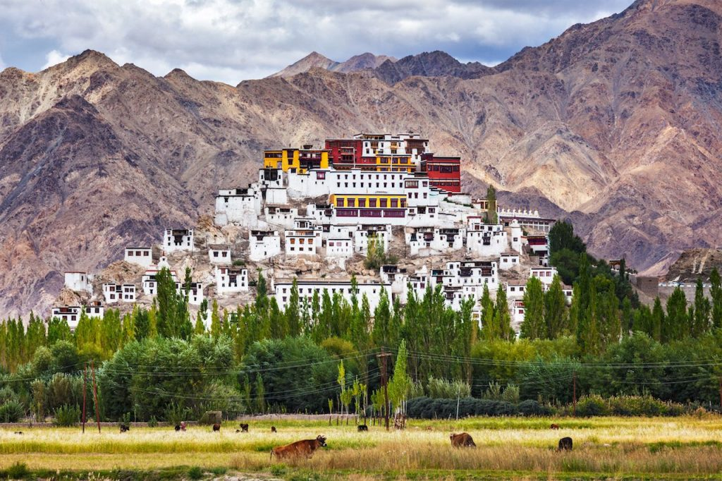 Thiksey Monastery in Ladakh. Buddhism. Monasteries in India. Travel Stories. Backpacking Ladakh.