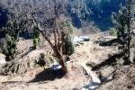 camp-chopta-gallery4-3-JustWravel-3-JustWravel.jpg