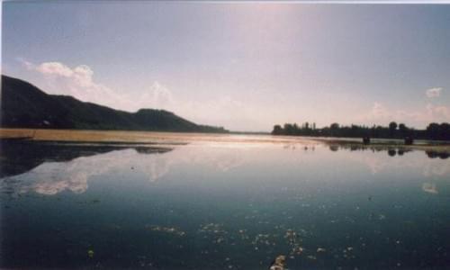 Marigold lake
