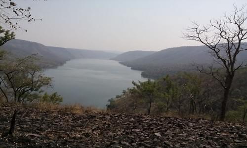 Nallamal hills