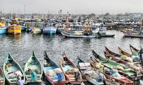 Fishing Harbor, Royapura