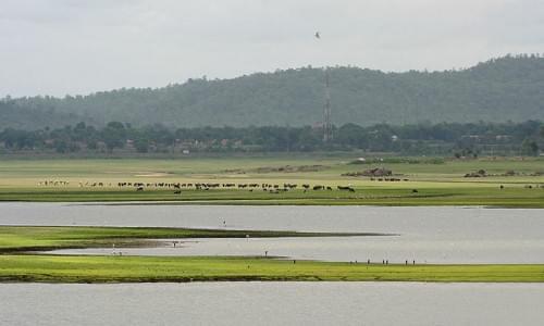 Pocharam Lake
