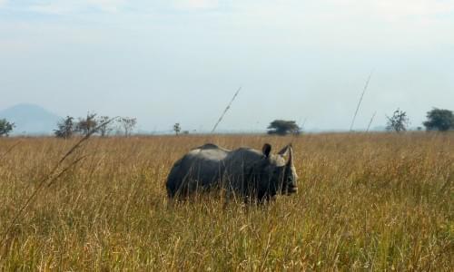 Lengteng Wildlife Sanctuary