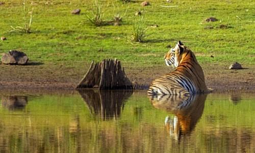 Saza Wildlife Sanctuary