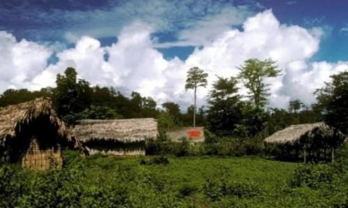 Namdhap National Park