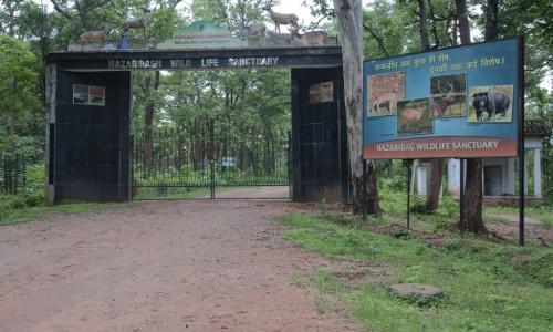 Hazaribaug National Park