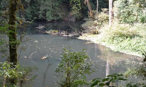 Dzudu Lake