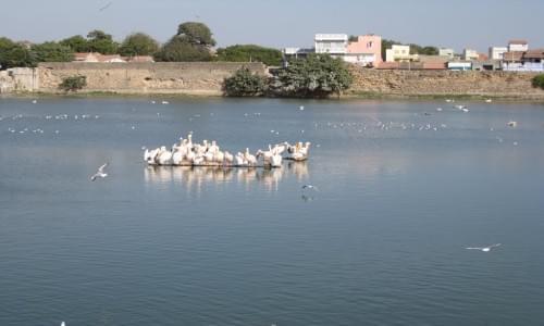 Topansar Lake