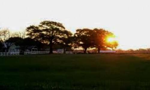 Lalong Park