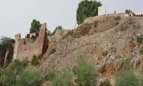 Lat of Feroz Shah