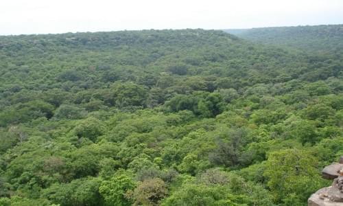 Kheoni Sanctuary