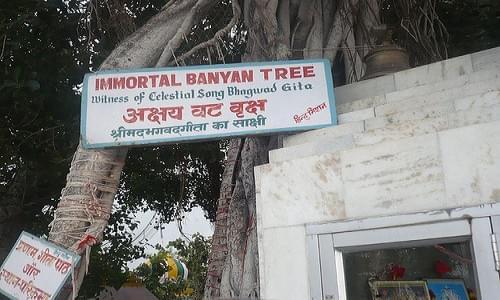 Akshaya Vatvruksha