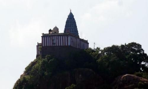 Pakhi Tirtha