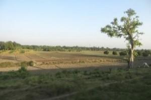 Jangipur