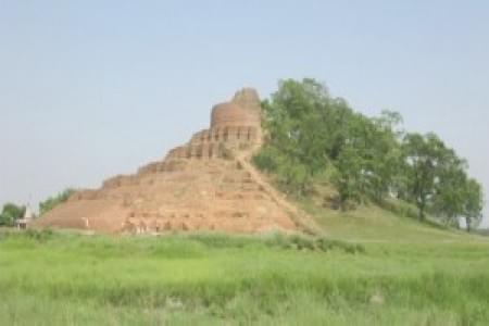 justwravel-Yamuna Nagar