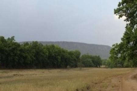 justwravel-Bandhavgarh