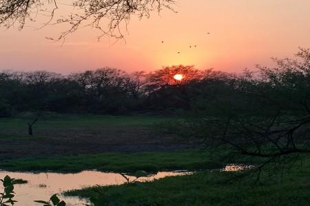justwravel-Bharatpur