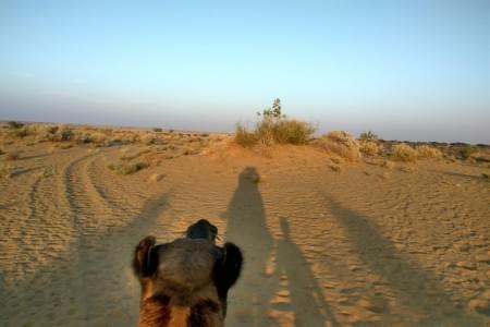 justwravel-Jaisalmer