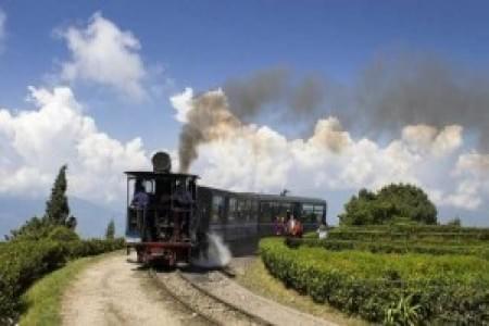 justwravel-Darjeeling