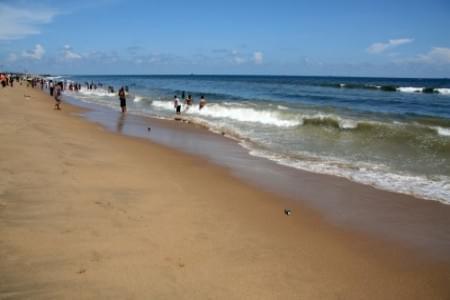 justwravel-Chennai