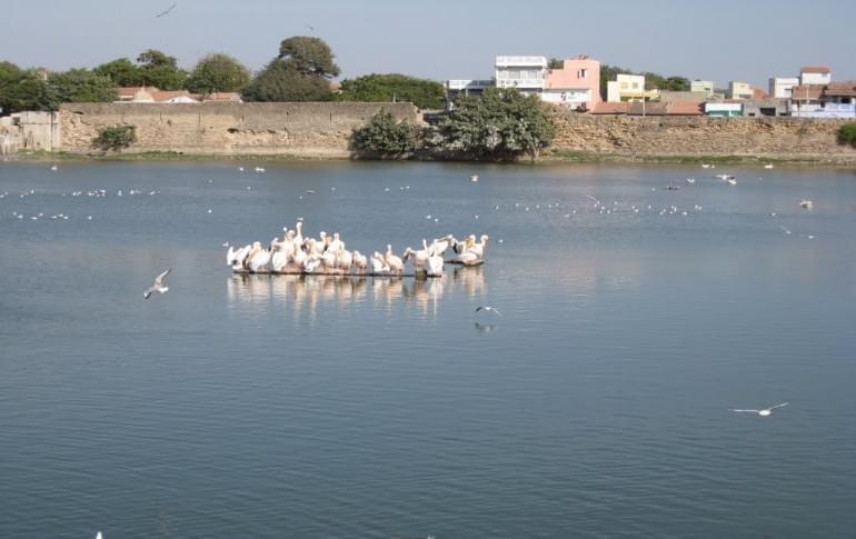 Justwravel_Mandvi_1483953761_0topansar_lake.jpg