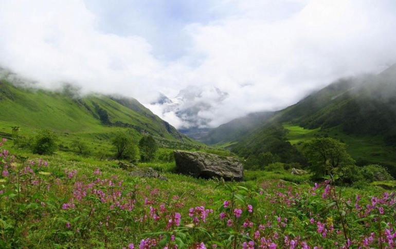 Justwravel_adventure_Valley_of_Flowers_1462618624_1Valley-0-JustWravel.png