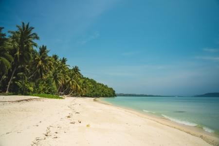 5-Night-6-Days-Exotic-Tour-Package-of-Andaman-JustWravel-1597393591.jpg - JustWravel