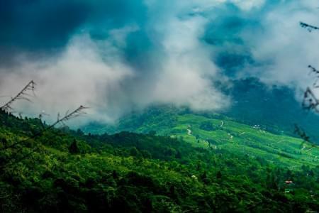 6-Night---7-Days-Sikkim-Tour-with-Yumthang-&-Darjeeling-JustWravel-1597388295.jpg - JustWravel