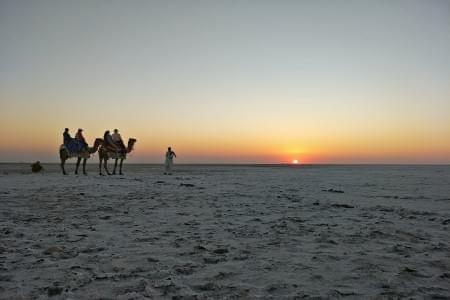 7-Day-Tour-of-Rann-of-Kutch-from-Bhuj-JustWravel-1597387263.jpeg - JustWravel