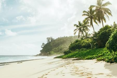 8-Night-9-Days-Seychelles-Tour-Package-JustWravel-1597395248.jpg - JustWravel