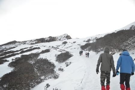 Deoriatal Chandrashila Trek - Justwravel Packages