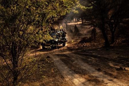 Golden-Triangle-Tour-Package-with-Ranthambore-National-Park-JustWravel-1597390950.jpg - JustWravel