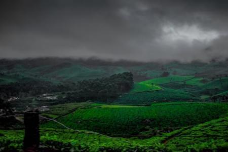 Kerala-Tour-Package-4-Night-5-Days-JustWravel-1597386821.jpg - JustWravel