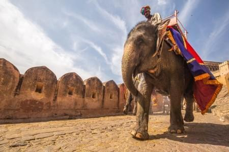 Never-Ending-Heritage-Rajasthan-Tour-Package-JustWravel-1597390600.jpg - JustWravel