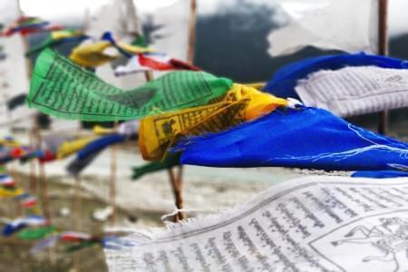 Sikkim-Backpacking-to-Gangtok-Pelling-Yuksom-Namchi-JustWravel-1597384452.jpg - JustWravel