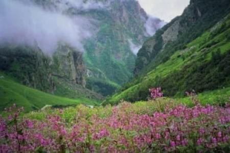 Trekking-to-Dzukou-Valley-and-Japfu-Peak-JustWravel-1597385003.jpg - JustWravel