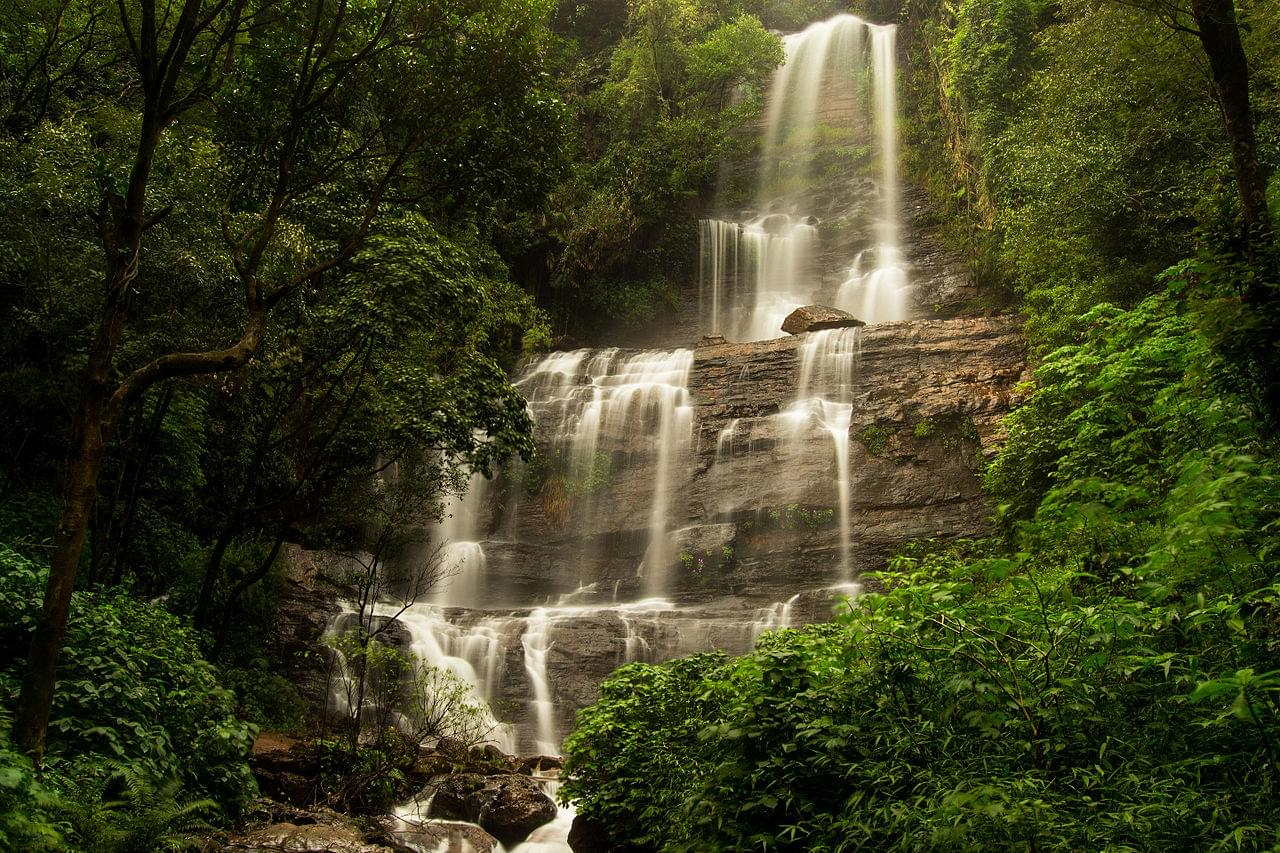 4-Night-5-Days-Chikmagalur-and-Coorg-Tour-Package-JustWravel-1597395229-4.jpg