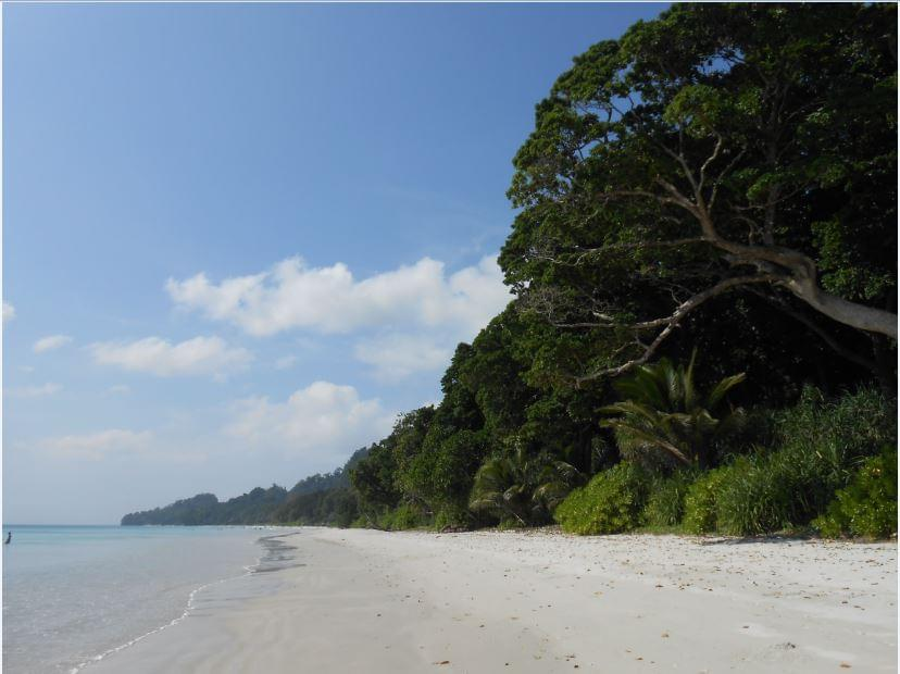 5-Night-6-Days-Exotic-Tour-Package-of-Andaman-JustWravel-1597393591-2.jpg